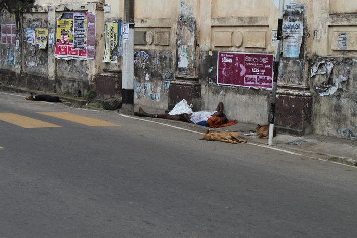 Житель Негомбо отдыхает на обочине с ребенком и верными псами.