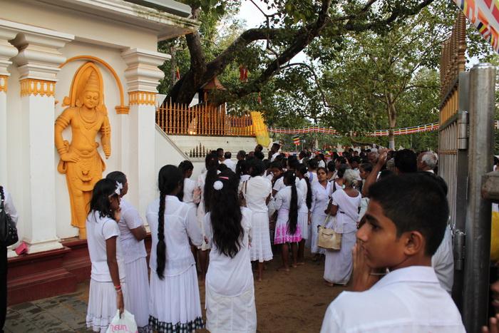Анурадхапура. Шри Маха Бодхи. Вечерняя служба.