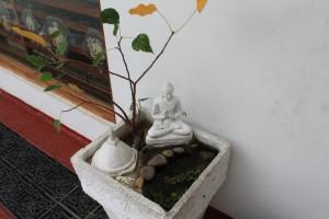 Канди. Статуя Будды. Духовность во всем.