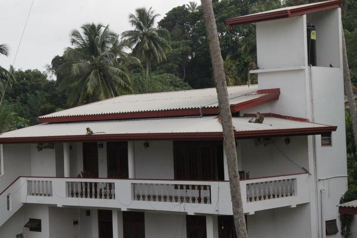 Мирисса. Соседний дом и обезьяны на крыше.