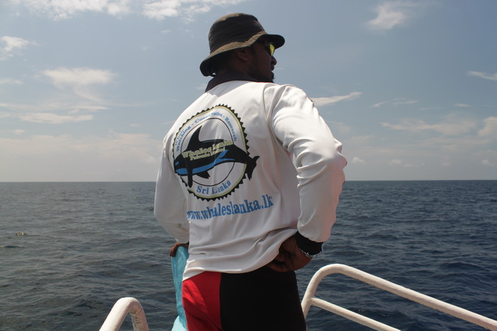Мирисса. В поисках китов. На чеку.