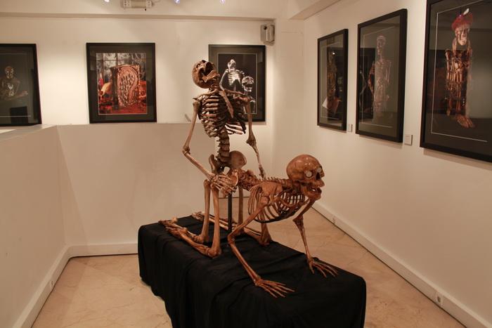 Париж. Экспонаты музея эротики.