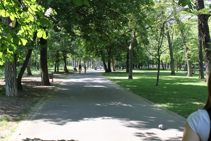 Париж. Булонский лес.