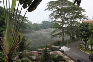 Куала-Лумпур. Парк птиц.
