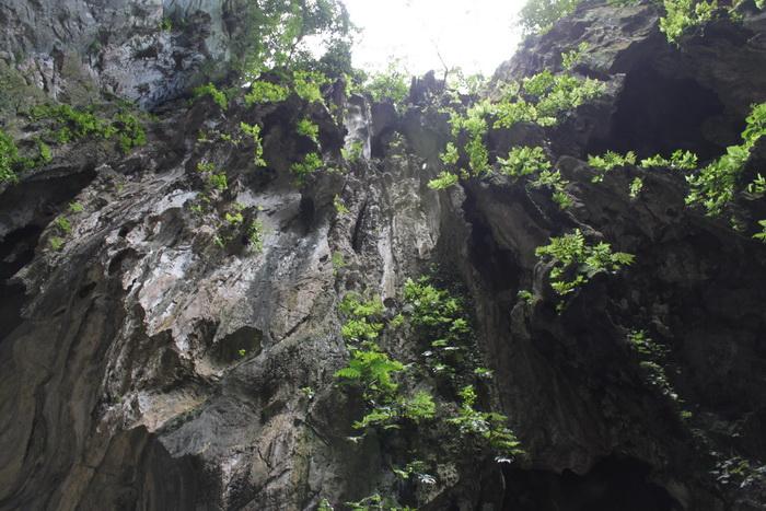 Куала-Лумпур. Пещеры Бату. Ниша в своде пещер.