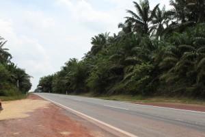 Малайзия. Дорога в Мерсинг.