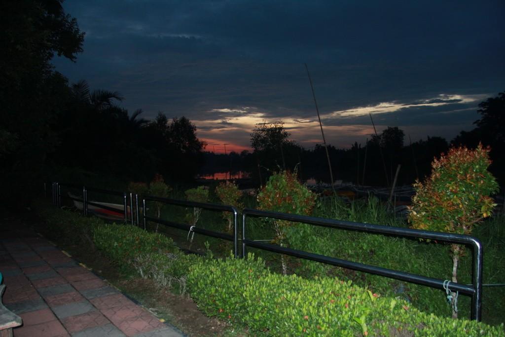 Куала-Селангор. Река светлячков.