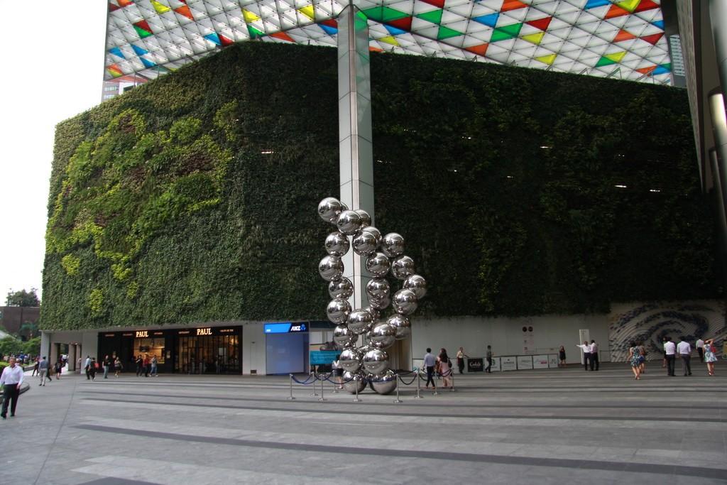 Сингапур. Карта мира из растений.