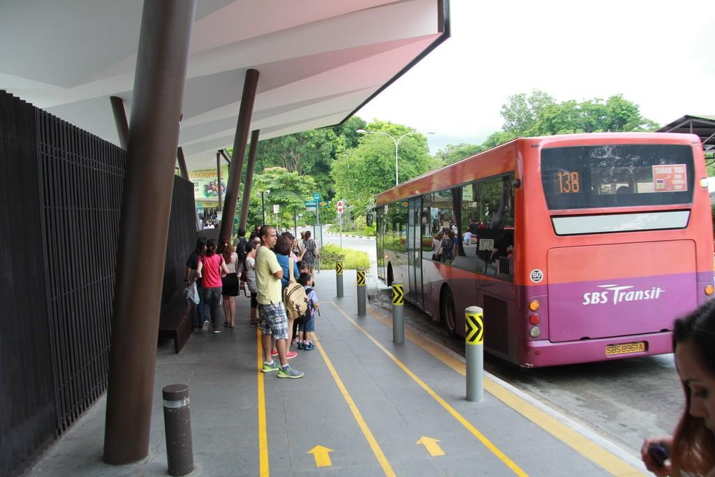 Сингапур. Как добраться до зоопарка. Автобус