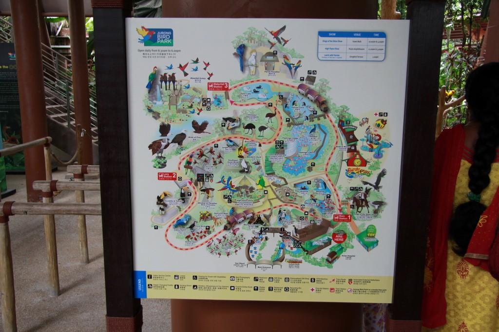 Сингапур. План парка птиц.