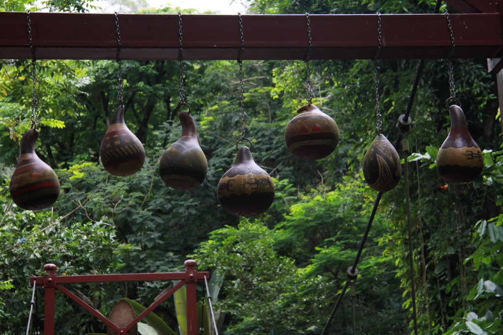 Сингапур. Парк птиц. Тропическая зона.