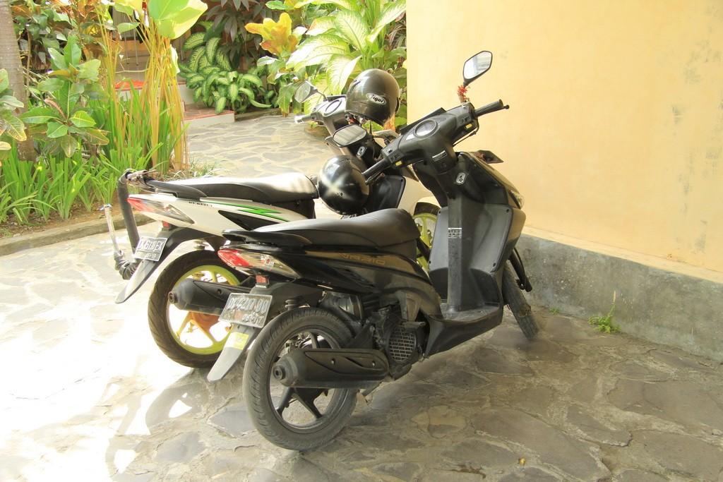 Бали. Аренда байка Honda Vario.