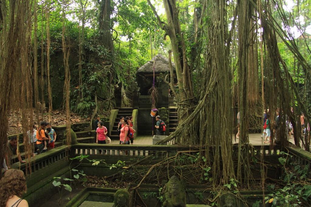Мистический лес обезьян в Убуде.