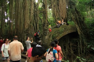 Убуд. Зловещие мостики с драконами в лесу обезьян.
