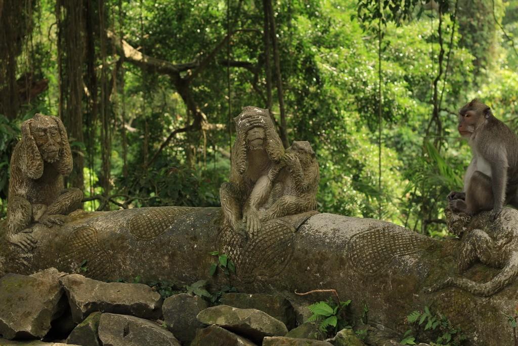 Лес обезьян в Убуде. Скульптуры обезьян.