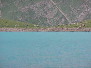Толпы туристов на другом берегу озера Коль-Тор.