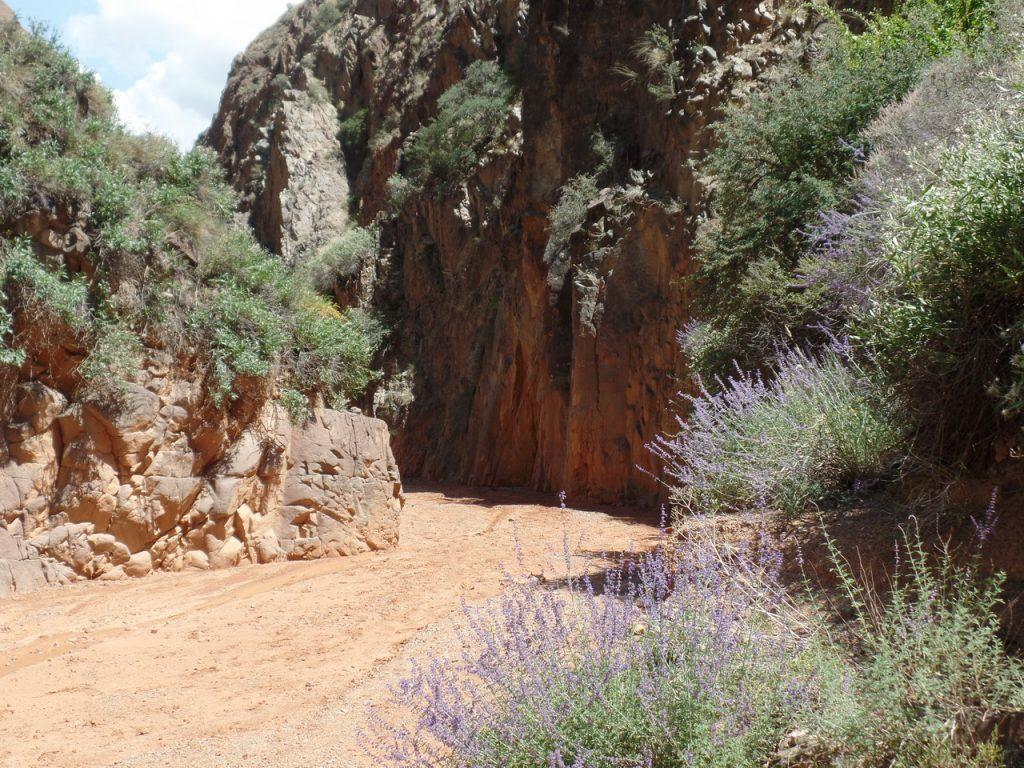Путь к каньонам лежит через русло реки.